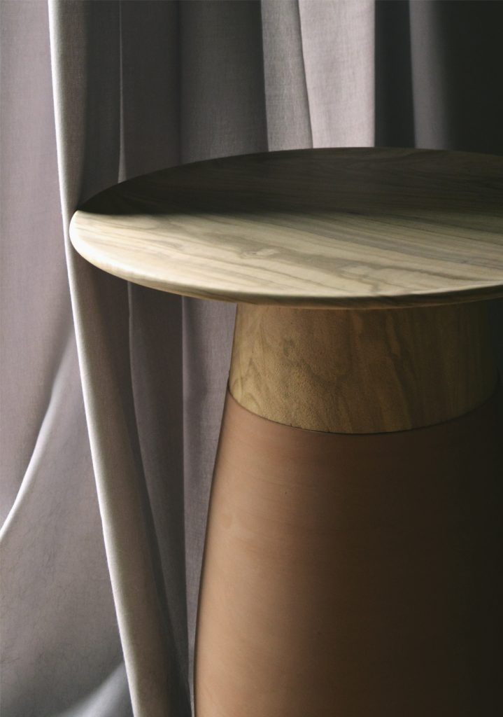 Boletus coffee table